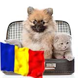 Transport Animale Romania